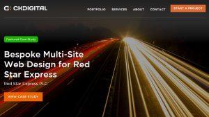 best-web-design-development-agency-companies-abuja-nigeria-ckdigital