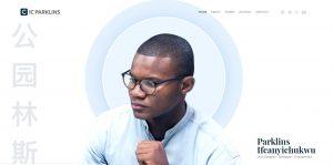 web-designer-company-nigeria-abuja-website-programmer-lagos